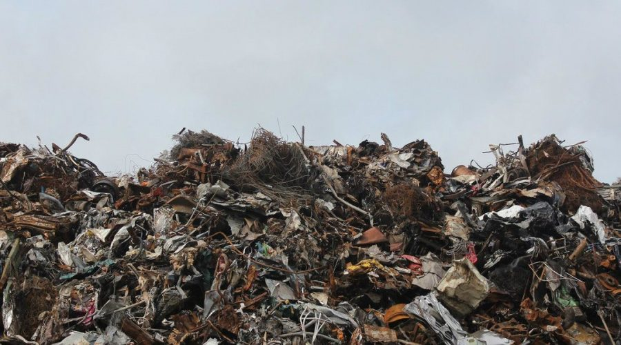 Project Management Tips: Managing Construction Debris Disposal